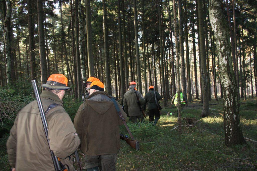 Spalio 15-oji – medžioklės su varovais pradžia: tikrųjų medžiotojų vertybės – pagarba savo veiklai ir žvėriui